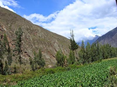 Valles junto al río Urubamba, tren al Machu Picchu, Perú, La vuelta al mundo de Asun y Ricardo, round the world, mundoporlibre.com