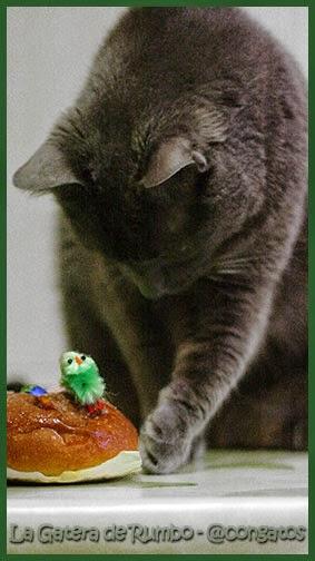 Gato y mona de Pascua