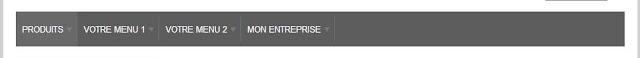 Personnaliser les menus de son site e-commerce