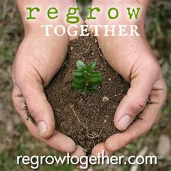 Regrow Together
