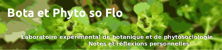 Bota et Phyto' so Flo