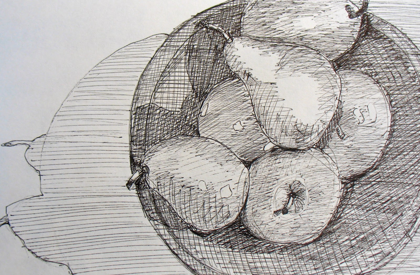 Contour Line Drawing Of Fruit : The painted prism fruit sketchbook color exercises