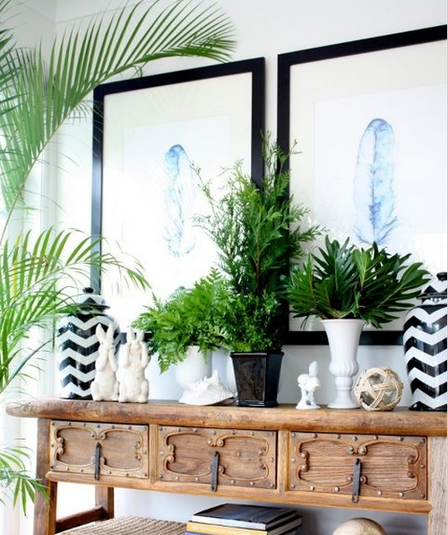 Decor Trend Exotic Home Plants