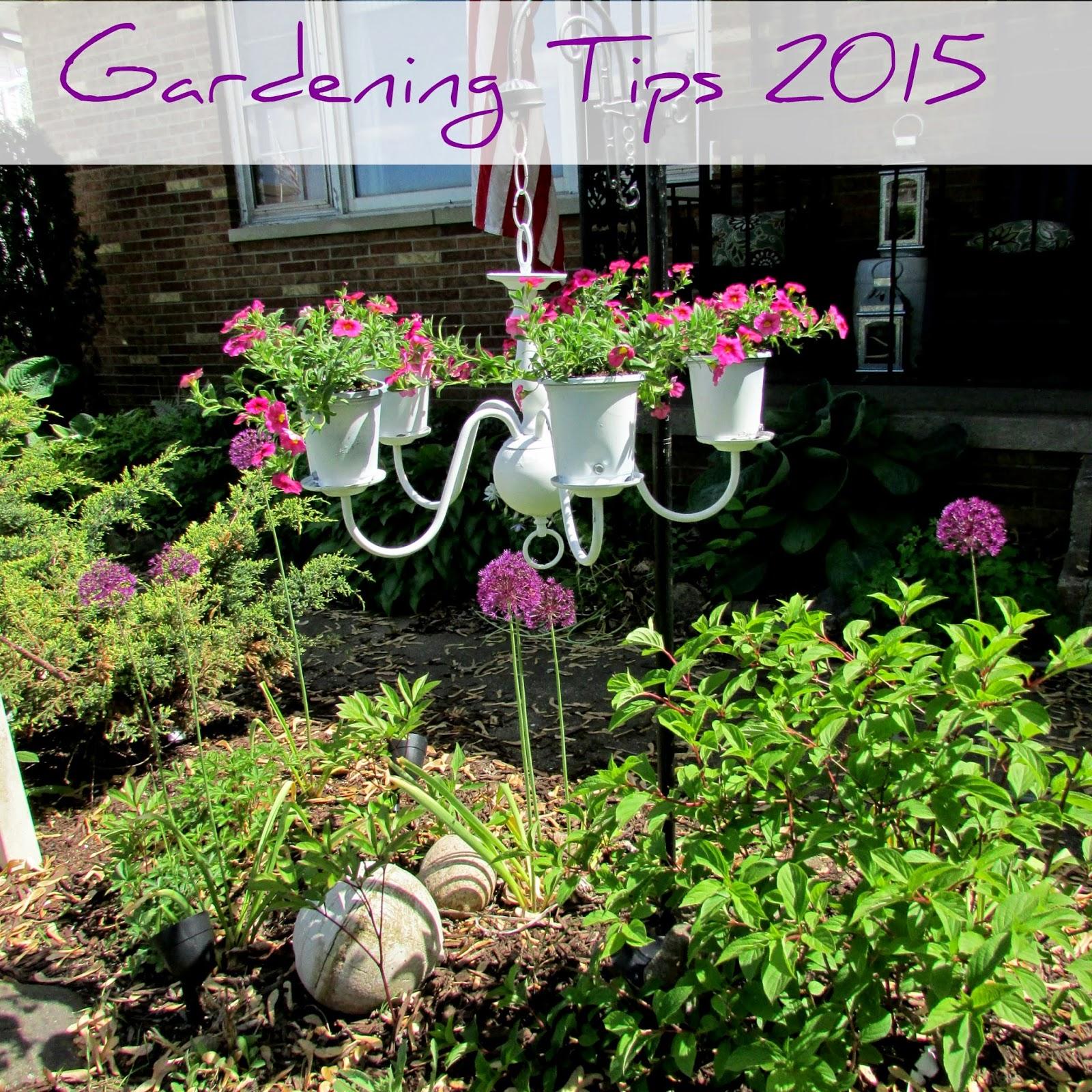 spring garden tips photos 2015 - Rustic Garden 2015