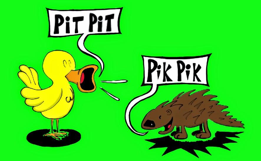 Pit Pit Pik Pik