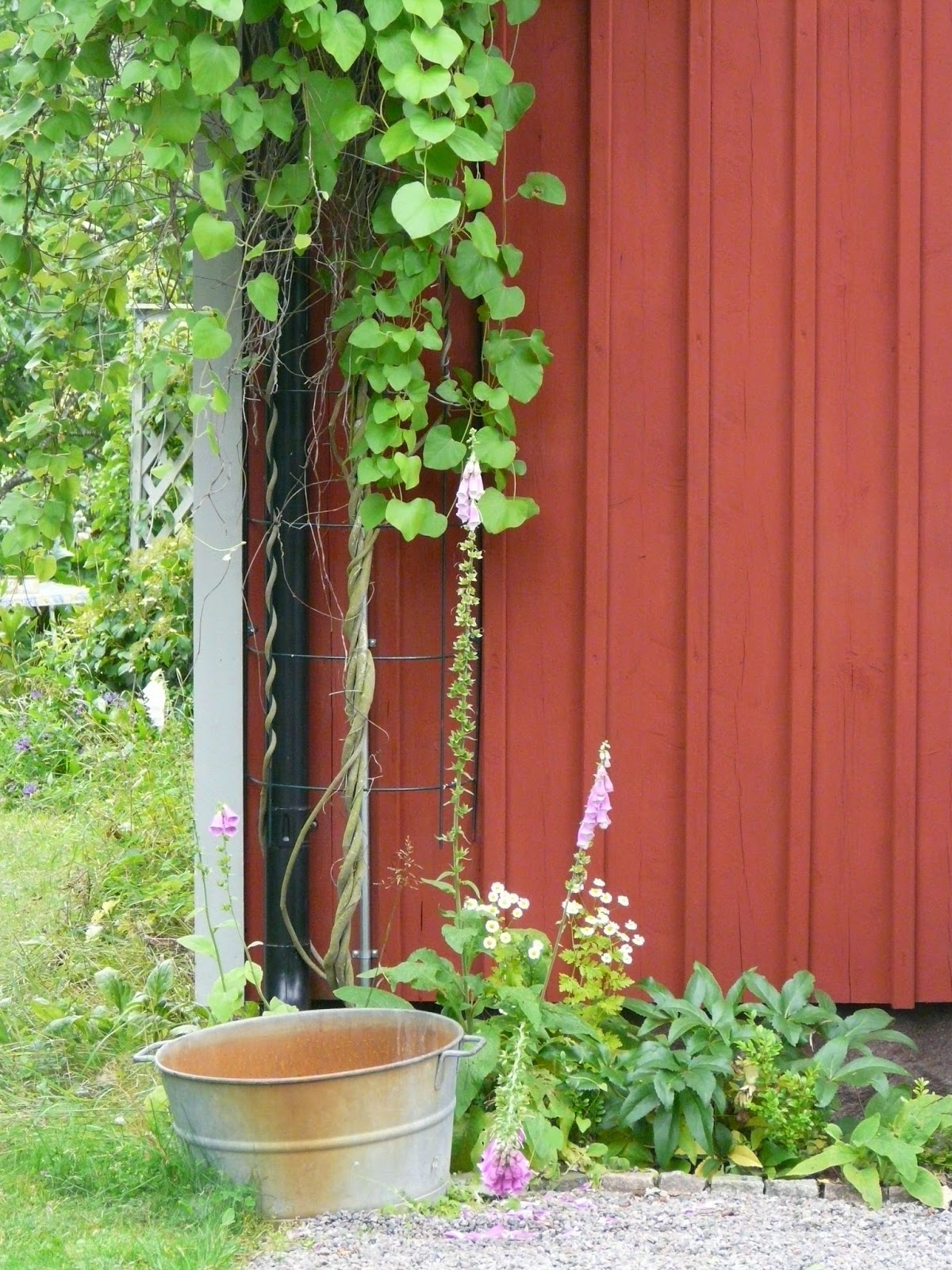 Våratäleberg Mötesplats Trädgård Juli 2014