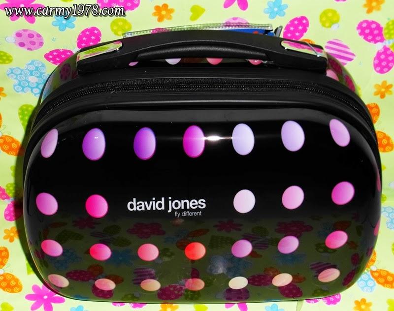 valigia-david-jones