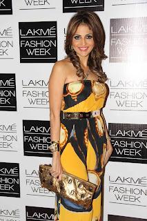Lakme Fashion Week india 2013  Pictures 16.JPG