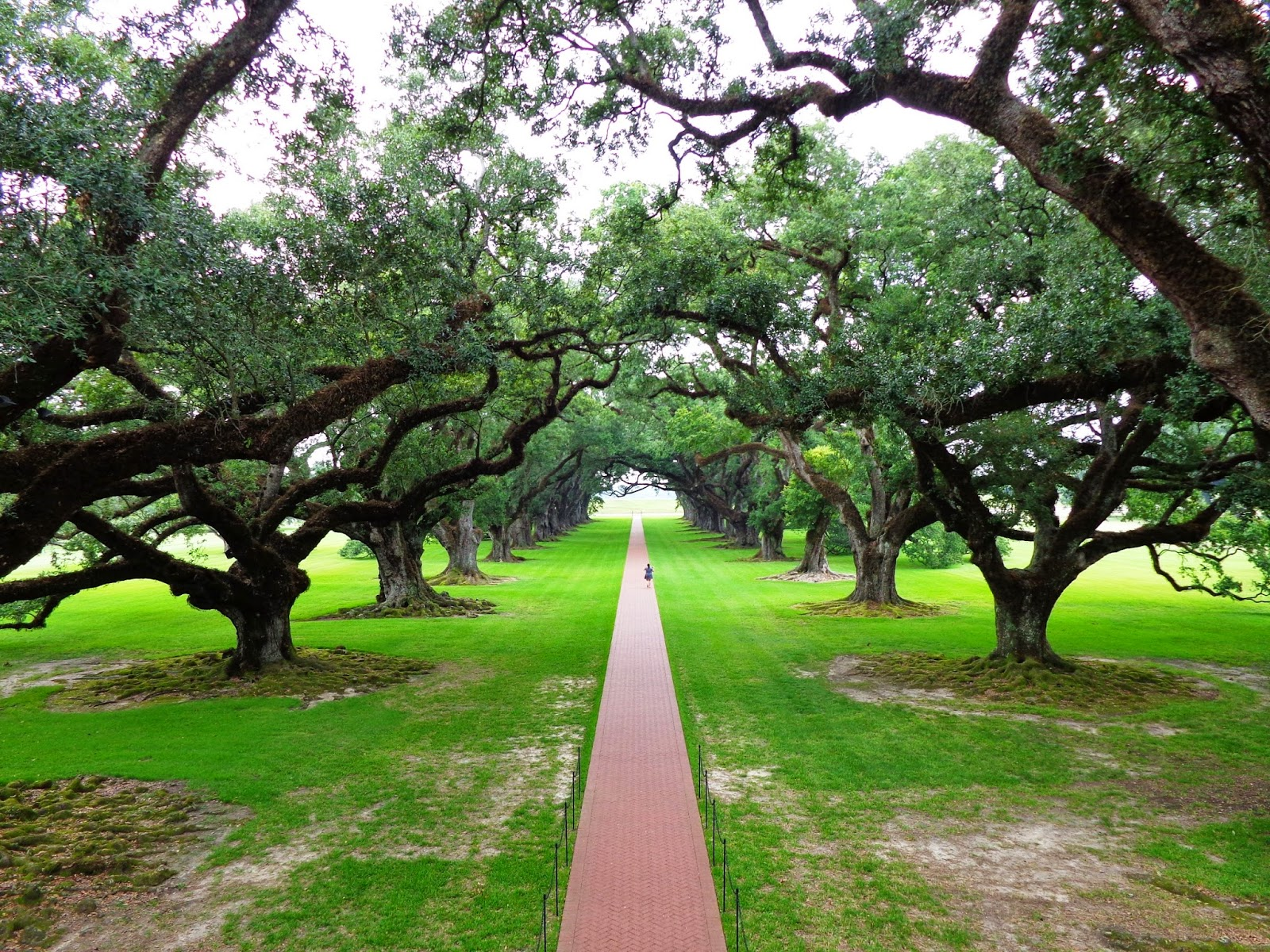 New Orleans Plantation Tour