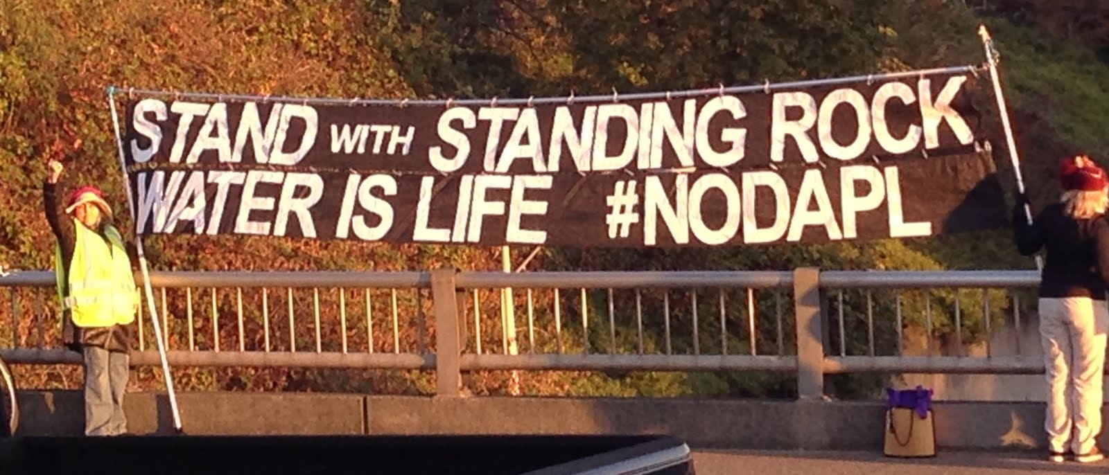 Stand with Standing Rock