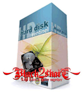 Hard Disk Sentinel Pro 4.10 Build 5816