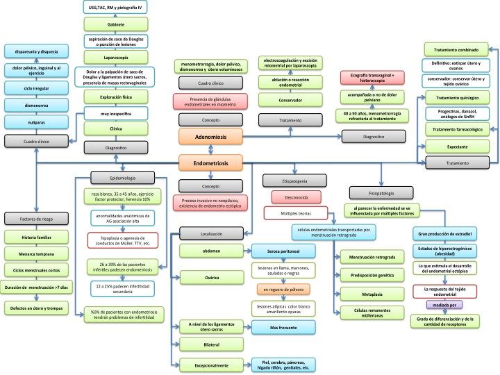 ginecologia oncologia: