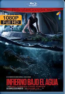 Crawl: Infierno bajo el agua online (2019) BDRip [1080p] [Latino] [GoogleDrive]