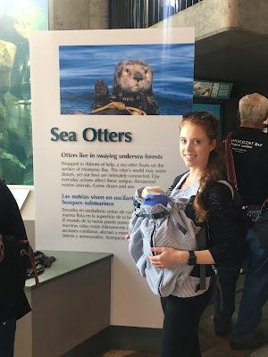weego monterey bay aquarium