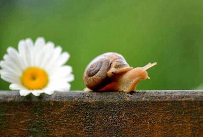Relaks Seketika...Jadikan Tekanan Itu Positif