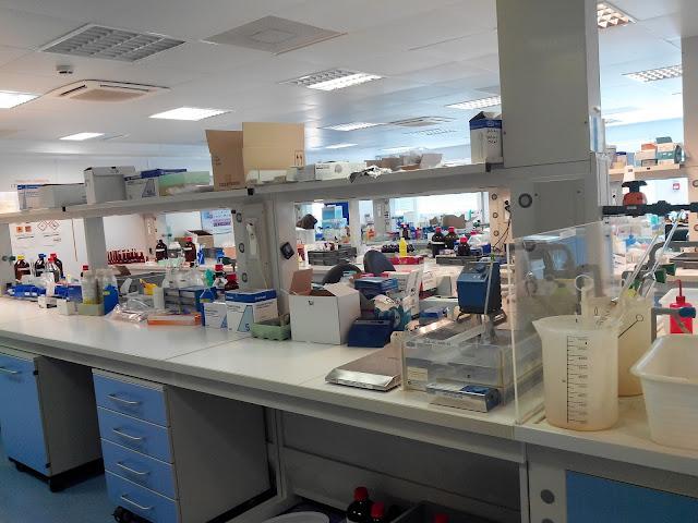 Laboratoires Arkopharma, aromathérapie, bullelodie