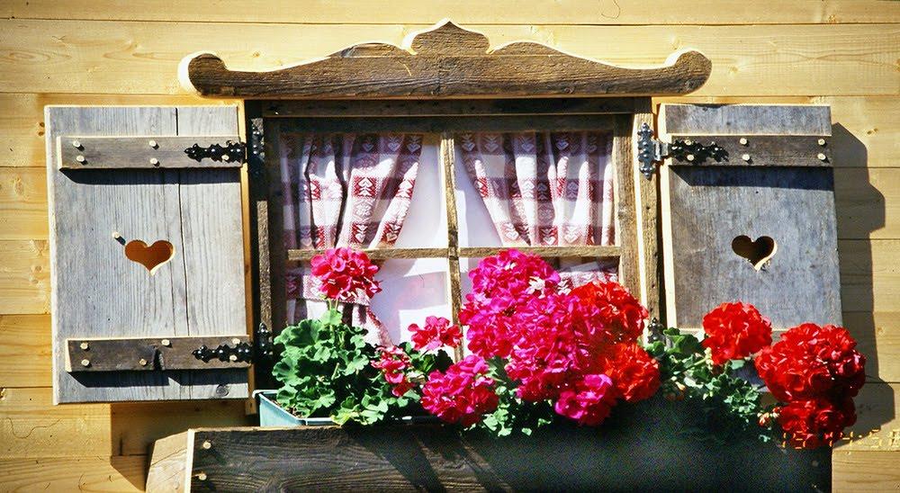 Digitando ottobre 2015 - Foto di finestre ...