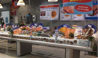 Fish Counter