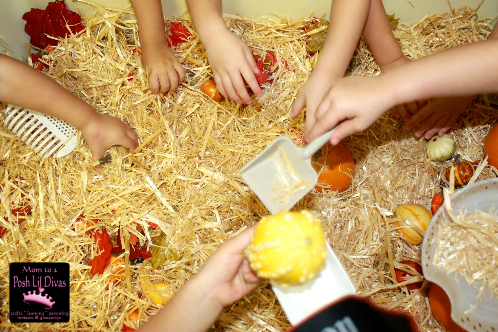 fall themed sensory table in preschool