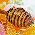Tổng hợp các cách trị mụn bằng mật ong tốt nhất