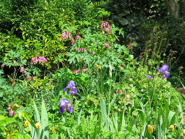 Le vieux clos matin d 39 avril - Au jardin de mon pere les lilas sont fleuris ...