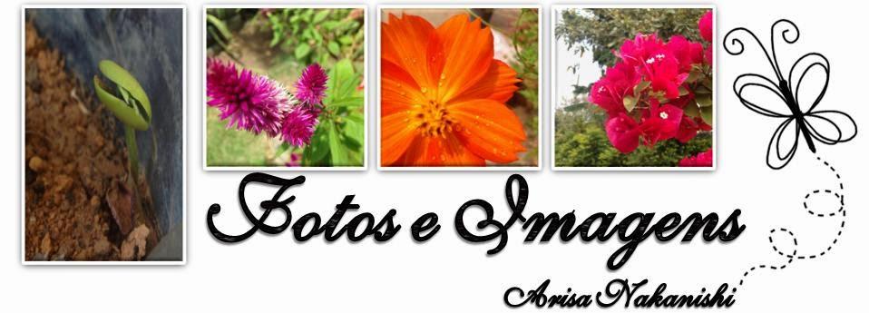 Fotos e Imagens Lindas