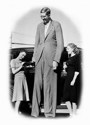 Bigfoot Evidence: Pictures of the Day: Tall People