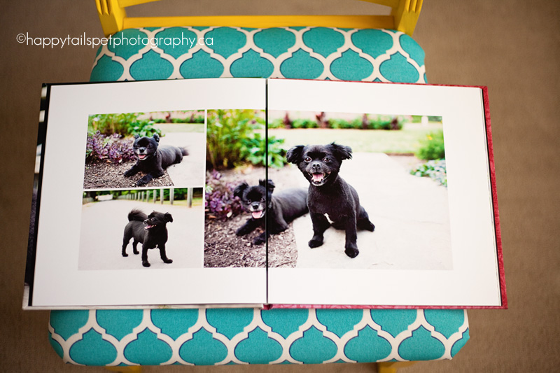 Client photo book