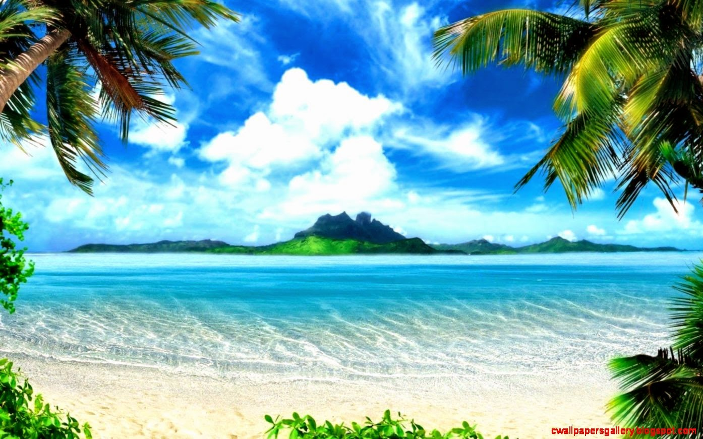 tropical paradise wallpaper - photo #5