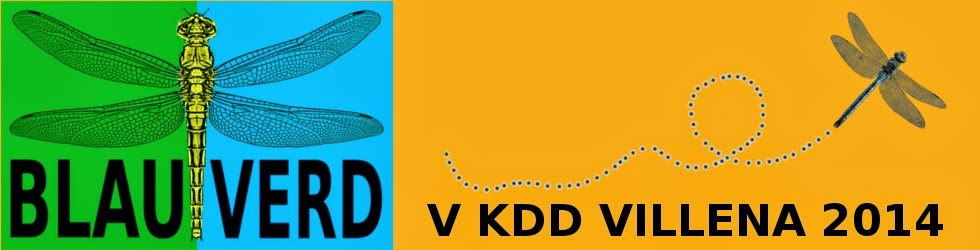 V KDD VILLENA 2014