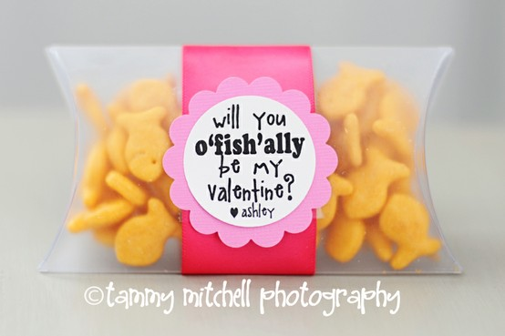 tammy mitchel photographys fishie valentines such a simple cute toddler valentine idea