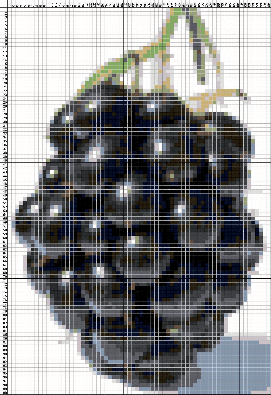 Gambar-Pola-Kristik-Buah-Blackberry.jpg