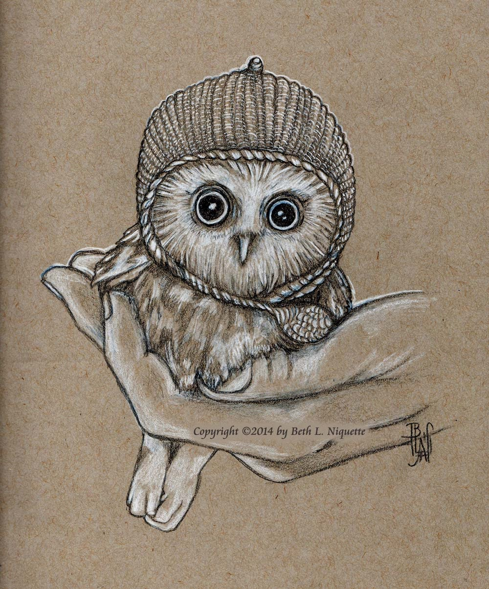 Baby Owl Drawing Black And White Baby Owl Black And White
