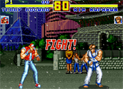Fatal Fury Special Online