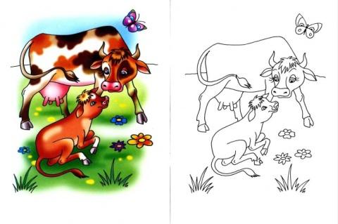 Картинка раскраска коровы для детей 156