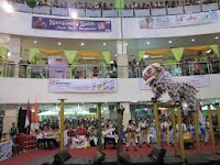 Barongsai Tarakan Borneo Juara Dunia