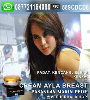 Cream Payudara Ampuh