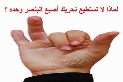 لماذا تستطيع تحريك أصبع البنصر وحده