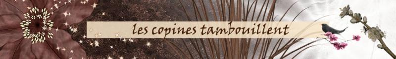 Les Copines Tambouillent