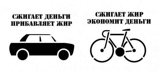 сравнение автомобиля и велосипеда