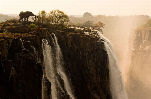Gambar gambar Unik tentang Alam