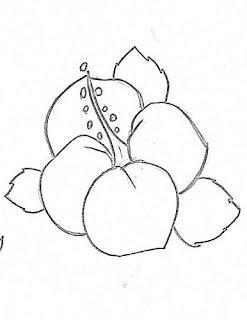 desenho de hibisco