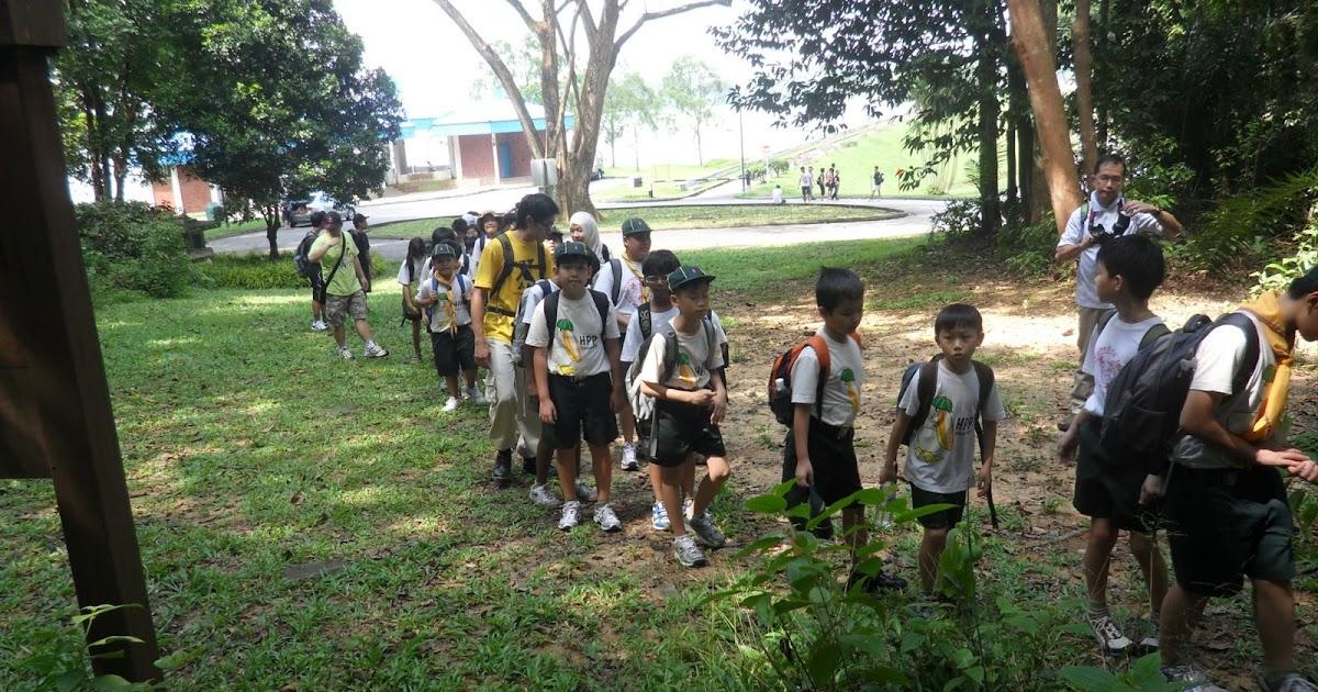 Backyard Jungle Cub Scouts : Henry Park Pelican (Cub) Scout Hike from Seletar to Bt Panjang
