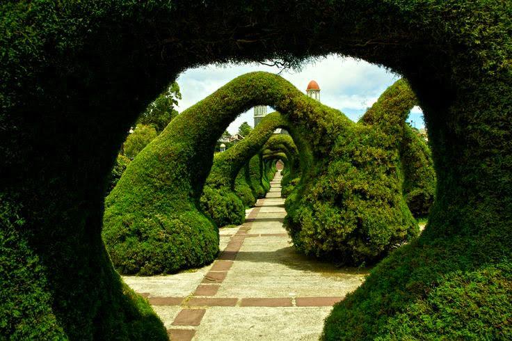 Parque Francisco Alvarado, Costa Rica