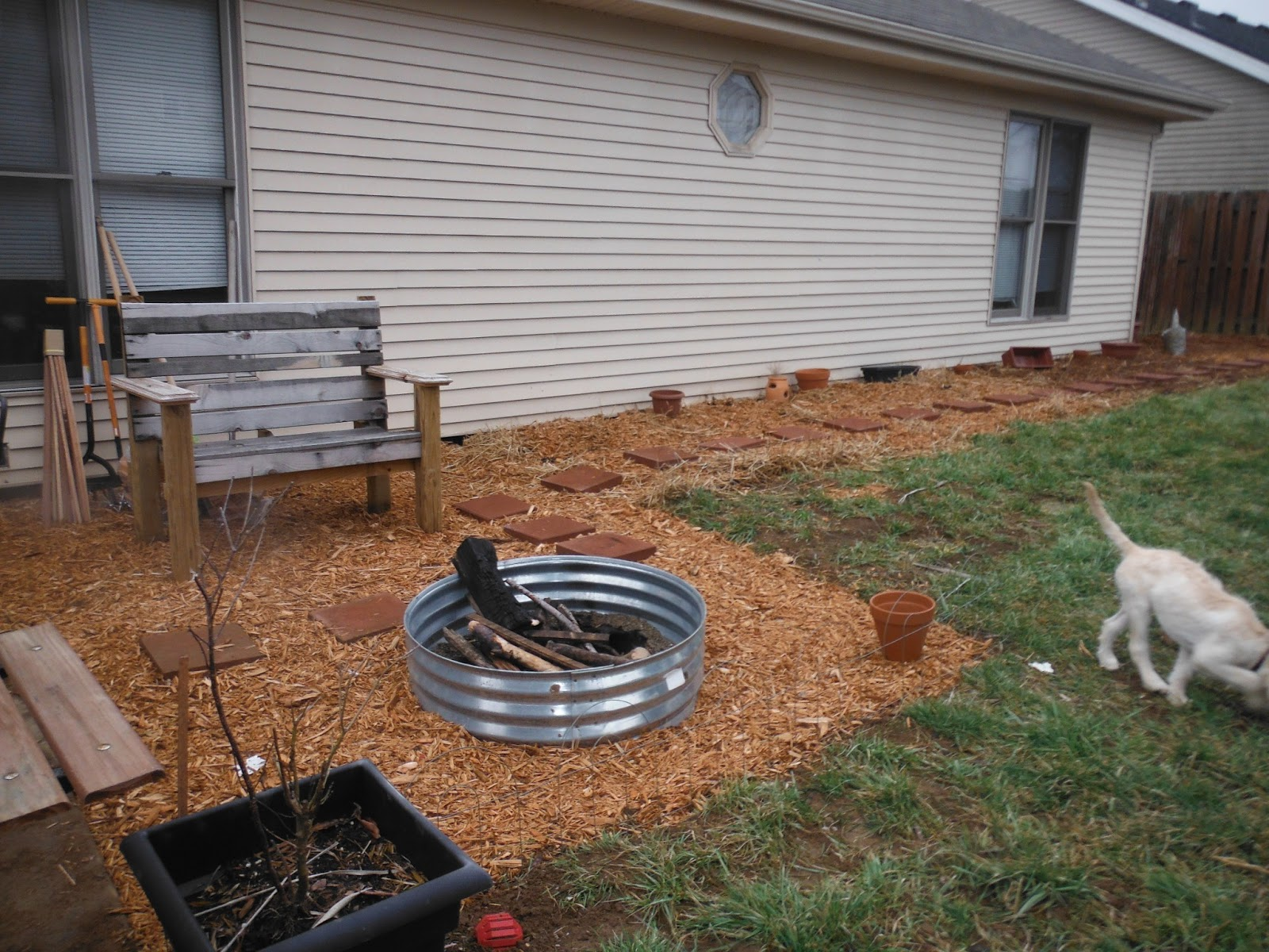 Suburban Backyard Farming : Suburban Backyard Farm Turning our yard into a Farm