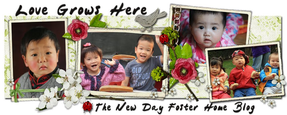 Love Grows Here : The New Day Foster Home Blog