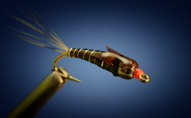 A great pre hatch baetis nymph fly fish food fly for Hatch fly fishing