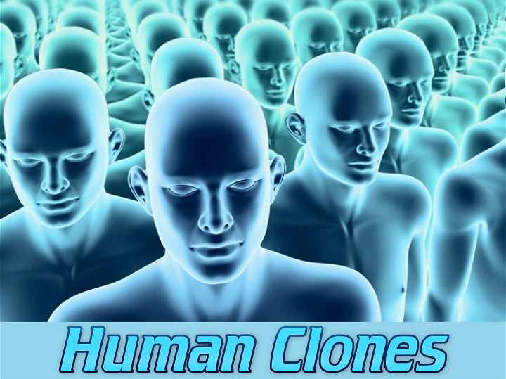 Essay On Human Cloning Is Wrong Free Cloning Essays And Papers Helpme