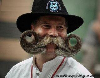 Magnificent Funny Beards Pictures To Pin On Pinterest Pinsdaddy Hairstyle Inspiration Daily Dogsangcom