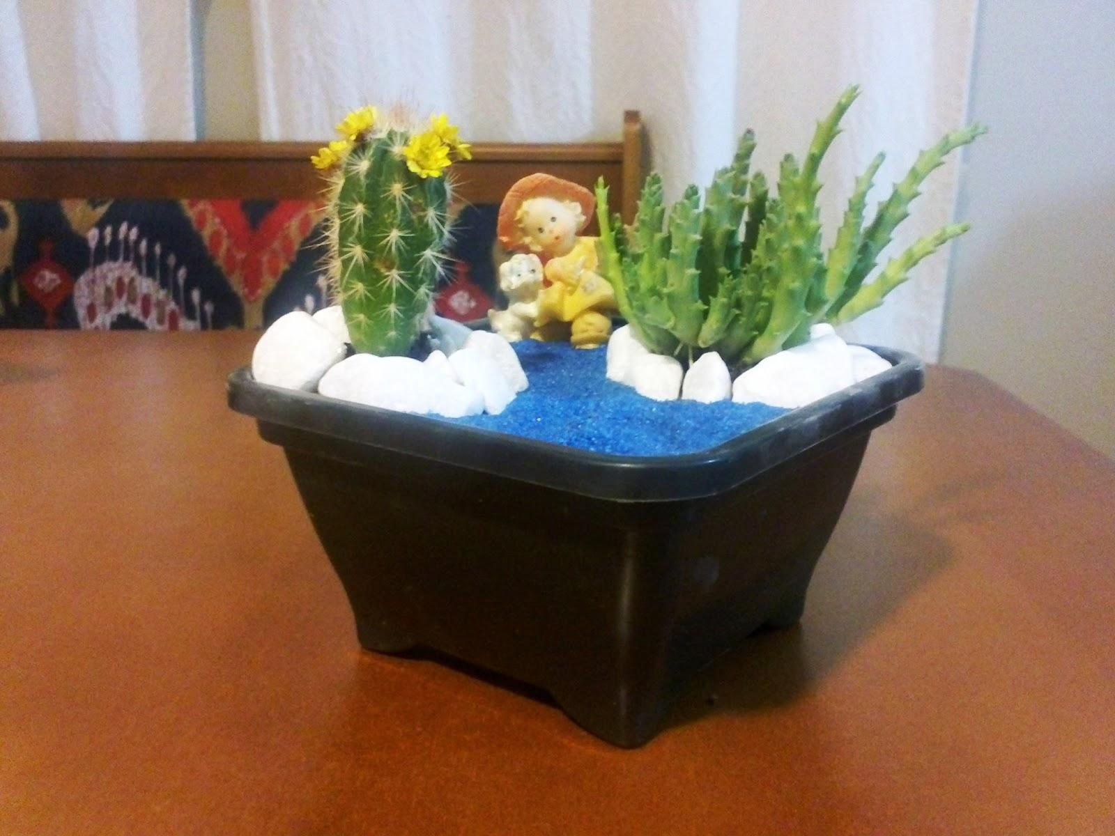 mini jardim cactos suculentas : mini jardim cactos suculentas:Inovando com Cactos e Suculentas.: Mini Jardim de Cactos.